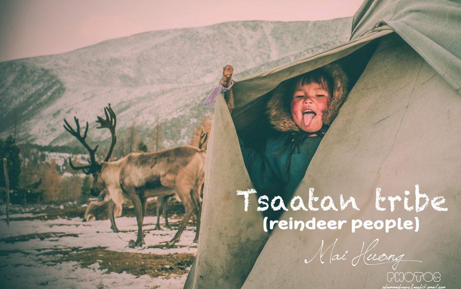 Những trải nghiệm nhớ đời nhất trong hành trình khám phá bộ lạc Tsaatan