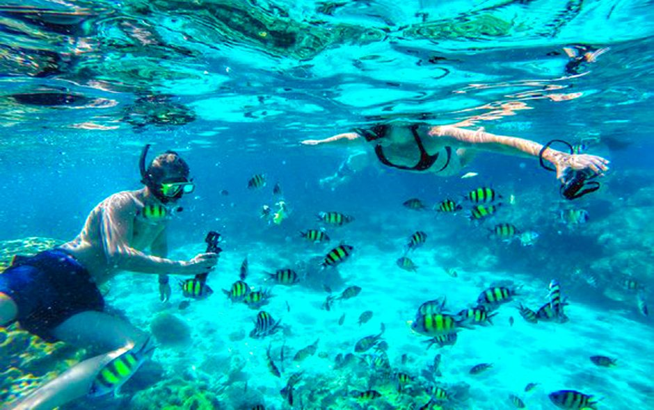 Snorkeling in Koh Phi Phi and 3 Khai Island