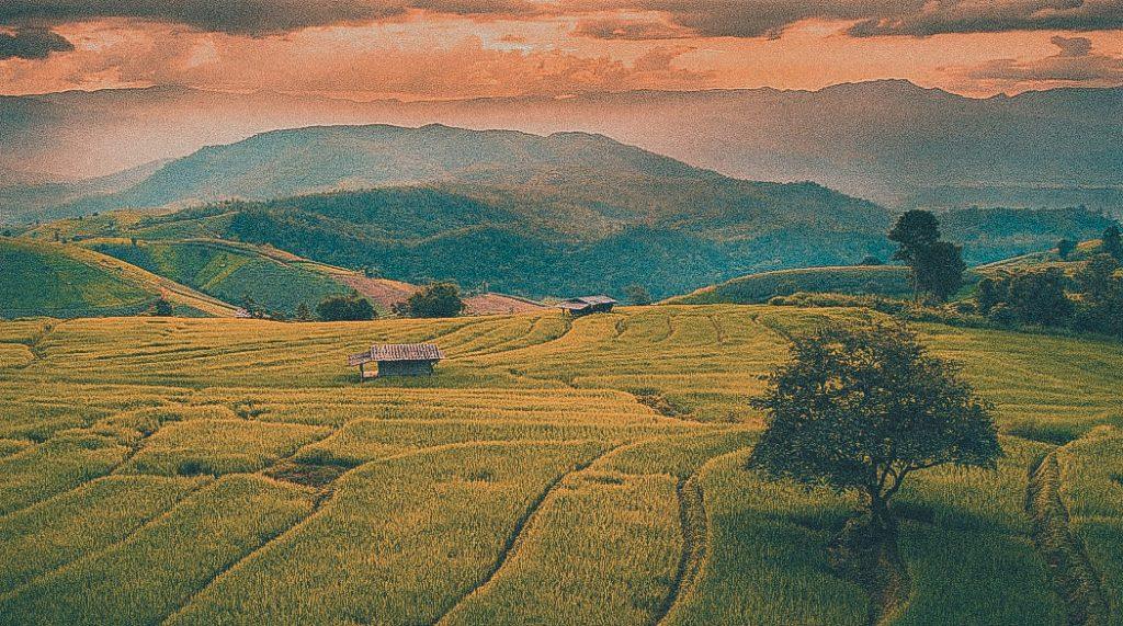 Beautiful-terrace-rice-fields-Chiang-Mai-Thailand-1050x585