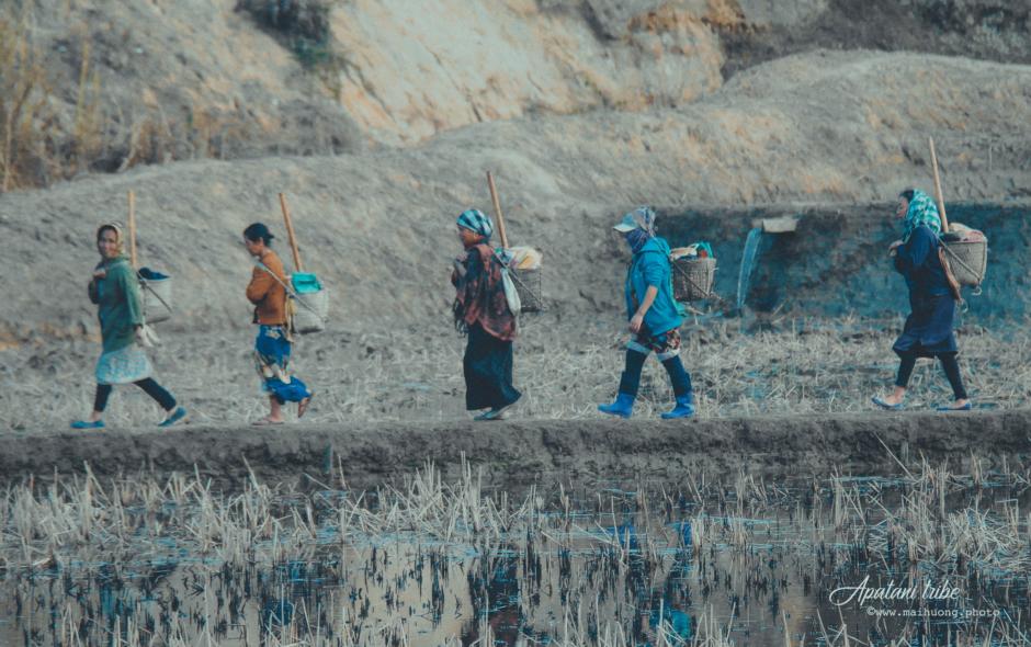 🇮🇳 Ấn Độ (Chap 19): Tôi học được điều gì từ cách sống của người Apatani?